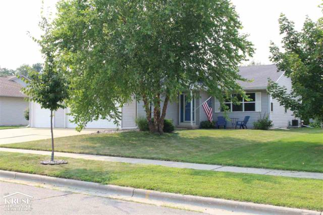 965 Baneberry Dr, Sun Prairie, WI 53590 (#1839006) :: Nicole Charles & Associates, Inc.