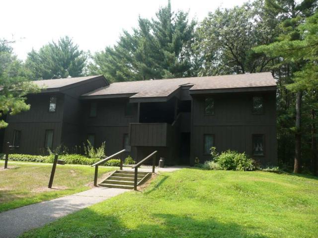 10 Pine Tr, Springville, WI 53965 (#1839112) :: Nicole Charles & Associates, Inc.