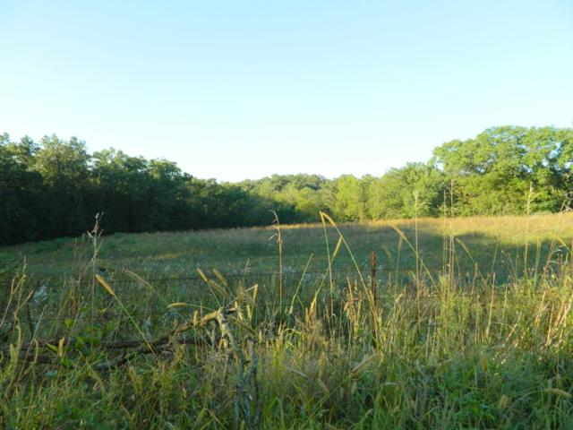 21.99 Ac White Oak Rd, Adams, WI 53504 (#1841184) :: Nicole Charles & Associates, Inc.