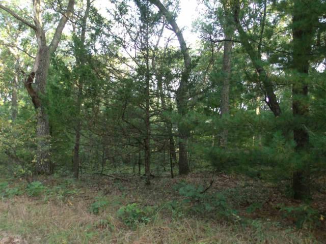 15.53 Ac Ember Dr, Easton, WI 53936 (#1841433) :: Nicole Charles & Associates, Inc.
