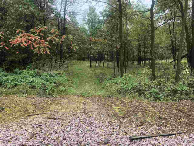 16.5 Ac County Road M, Greenfield, WI 54660 (#1841820) :: Nicole Charles & Associates, Inc.