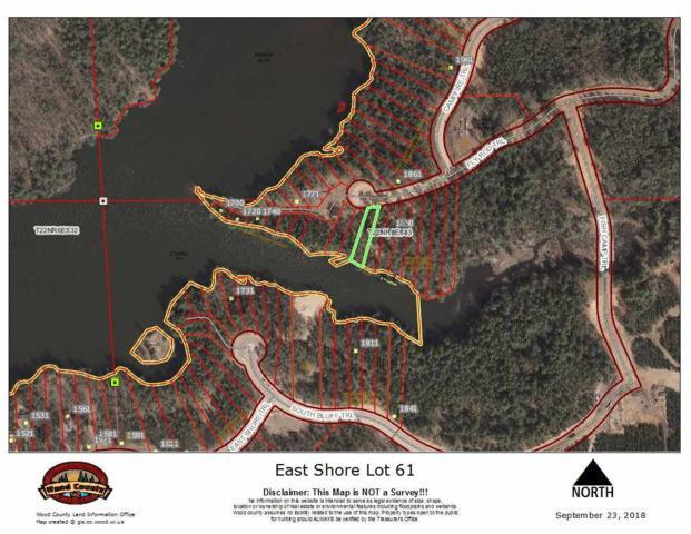 L61 East Shore, Saratoga, WI 54494 (#1842028) :: Nicole Charles & Associates, Inc.