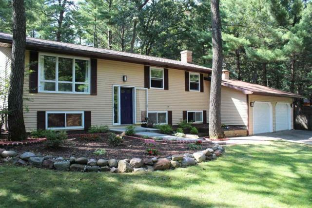 256 Meadowview Dr, Lake Delton, WI 53913 (#1842285) :: HomeTeam4u