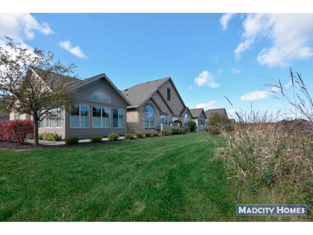 20 Pond View Way, Fitchburg, WI 53711 (#1842292) :: Nicole Charles & Associates, Inc.