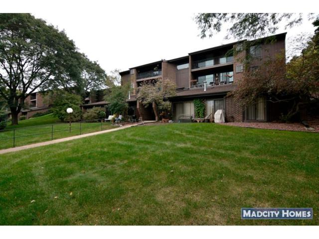 3208 Creek View Dr, Middleton, WI 53562 (#1842380) :: Nicole Charles & Associates, Inc.