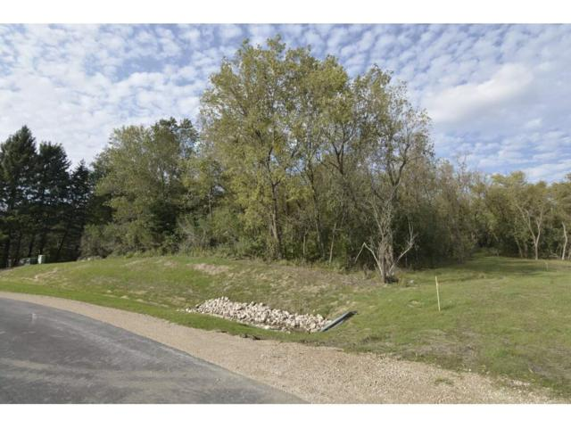 L6 Dream Catcher Way, Middleton, WI 53593 (#1843110) :: Nicole Charles & Associates, Inc.