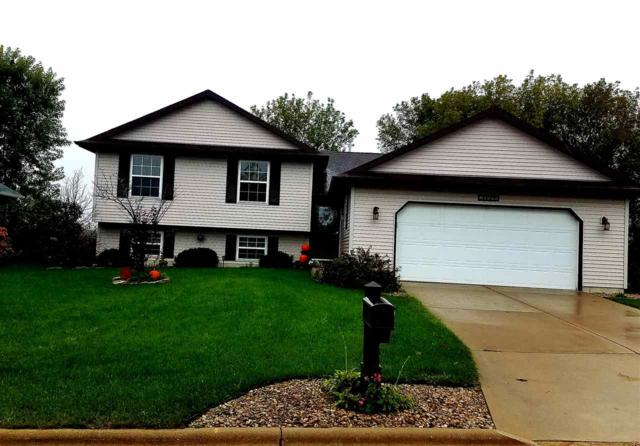 106 Green View Dr, Belleville, WI 53508 (#1843525) :: Nicole Charles & Associates, Inc.
