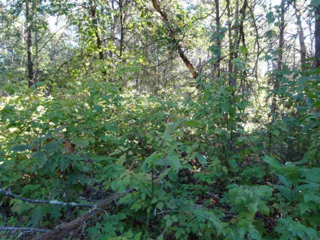 L170 Timber Tr, Germantown, WI 53950 (#1843736) :: HomeTeam4u