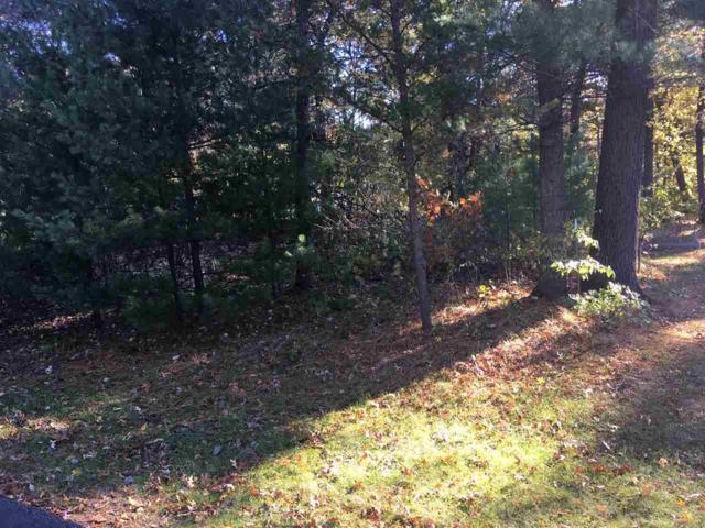 116 Red Oak Dr, Lake Delton, WI 53965 (#1844261) :: Nicole Charles & Associates, Inc.
