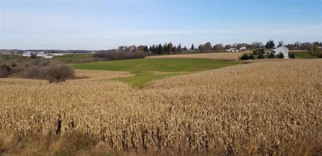 45 Ac. Broad St, Mineral Point, WI 53565 (#1844741) :: Nicole Charles & Associates, Inc.