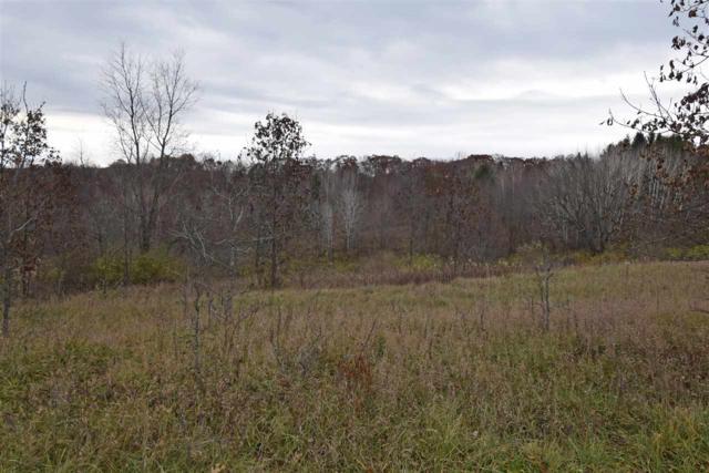 L312 Cross Trail Dr, Woodland, WI 53941 (#1845341) :: Nicole Charles & Associates, Inc.