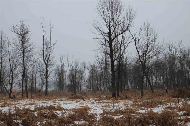 County Road X, Aurora, WI 54923 (#1846842) :: Nicole Charles & Associates, Inc.
