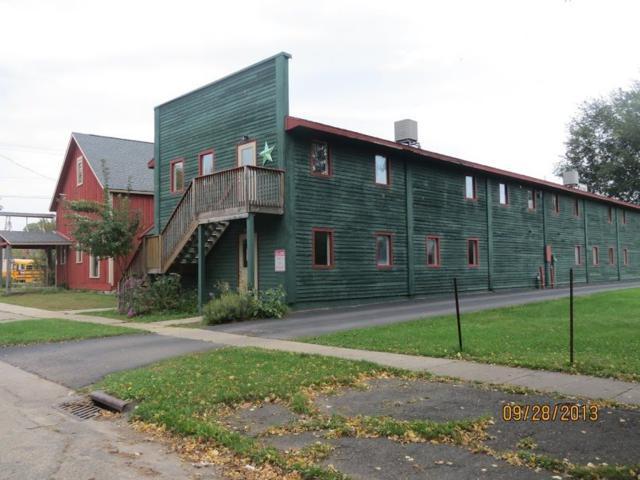 161 S Lexington St, Spring Green, WI 53588 (#1847051) :: Nicole Charles & Associates, Inc.