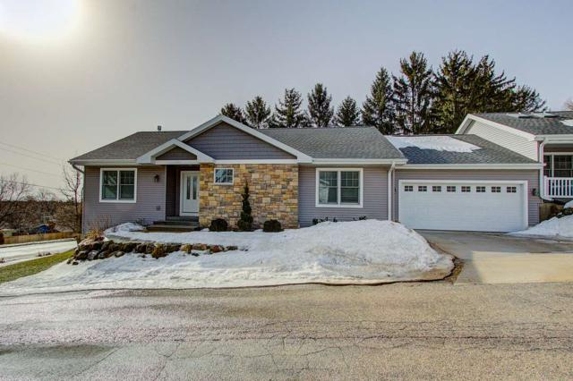 1101 Overlook Dr, Stoughton, WI 53589 (#1851766) :: Nicole Charles & Associates, Inc.