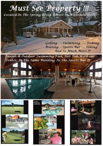 175 Cliffside Dr, Lake Delton, WI 53965 (#1851953) :: Nicole Charles & Associates, Inc.