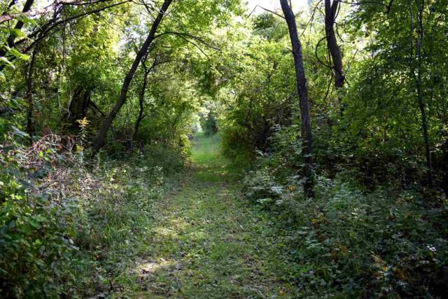L41 Ox Trail Way, Middleton, WI 53593 (#1852192) :: Nicole Charles & Associates, Inc.