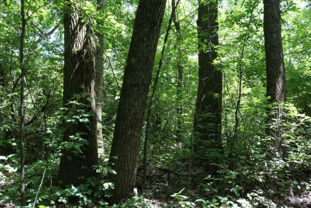32 AC Old Indian Tr, Vermont, WI 53515 (#1853787) :: Tucci Team