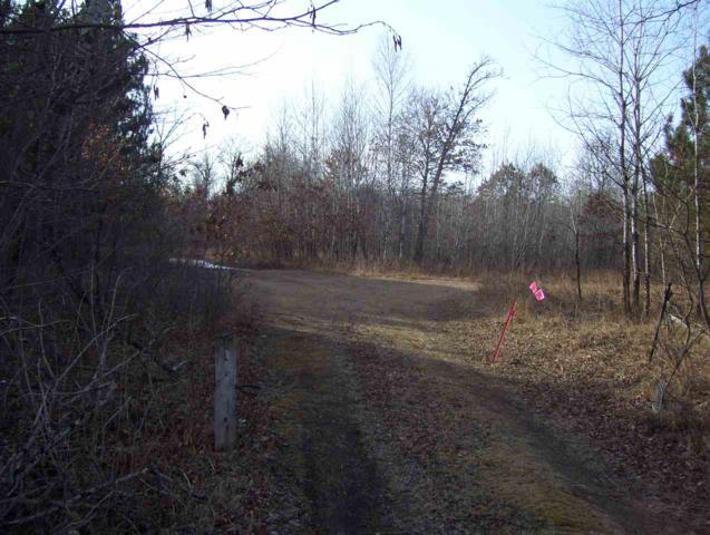 N3395 County Road M, Packwaukee, WI 53949 (#1856988) :: HomeTeam4u
