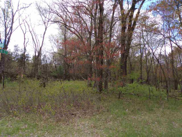 10Ac 5th Ave, Colburn, WI 54943 (#1857940) :: Nicole Charles & Associates, Inc.