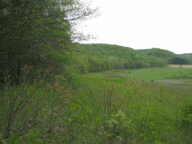 40 Ac County Road H, Arena, WI 53507 (#1858071) :: Nicole Charles & Associates, Inc.