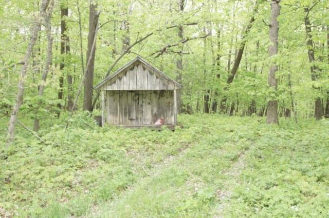 44.24 Ac County Road Y, Mineral Point, WI 53565 (#1858098) :: Nicole Charles & Associates, Inc.