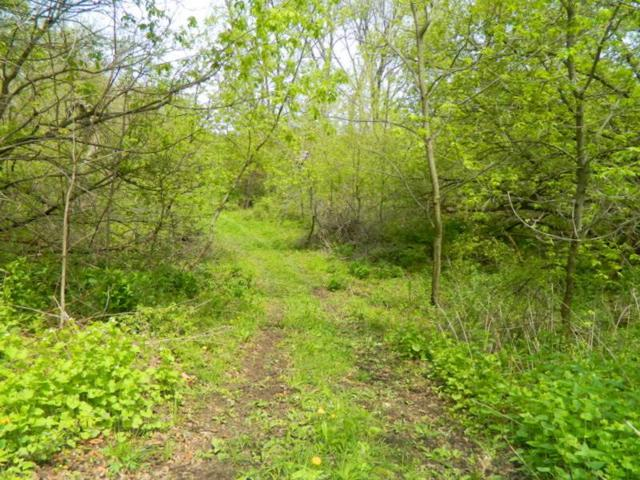 34.59 Ac Riverbend Rd, Gratiot, WI 53587 (#1859753) :: Nicole Charles & Associates, Inc.