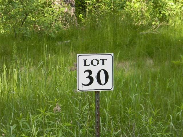 L30 Deer Run Ridge, Wisconsin Dells, WI 53965 (#1860512) :: HomeTeam4u