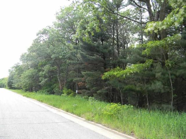 L163 Pleasant View Dr, Wisconsin Dells, WI 53965 (#1860515) :: HomeTeam4u