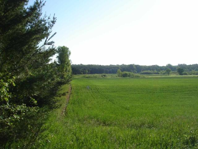 Lot 1 County Road B, Packwaukee, WI 53949 (#1861467) :: HomeTeam4u