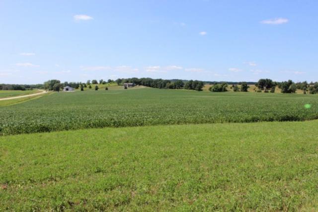 43 Ac County Road X, Lewiston, WI 53901 (#1861811) :: Nicole Charles & Associates, Inc.