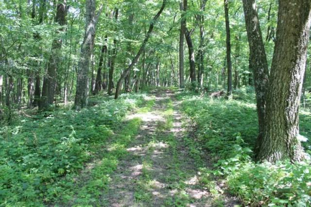 38 Ac County Road X, Fort Winnebago, WI 53901 (#1861814) :: Nicole Charles & Associates, Inc.