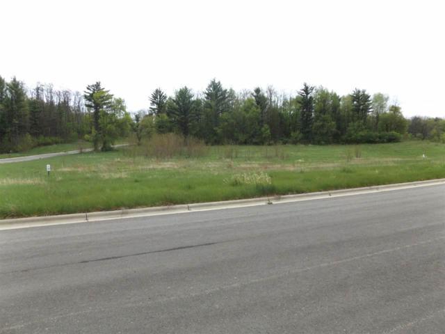 L51 Hunters Ridge Ln, Wisconsin Dells, WI 53965 (#1862353) :: Nicole Charles & Associates, Inc.