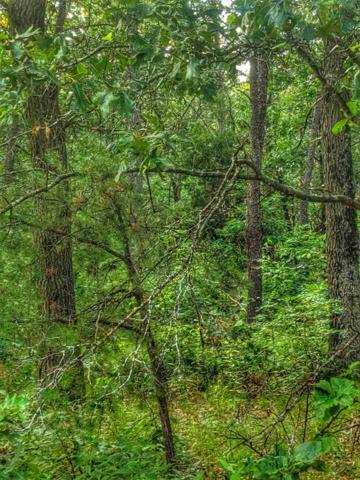 L28 N Duck Creek Ct, Adams, WI 53934 (#1863041) :: HomeTeam4u