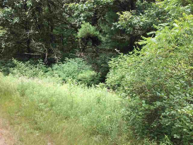 Lot 9 Gale Ct, Dell Prairie, WI 53965 (#1863647) :: Nicole Charles & Associates, Inc.