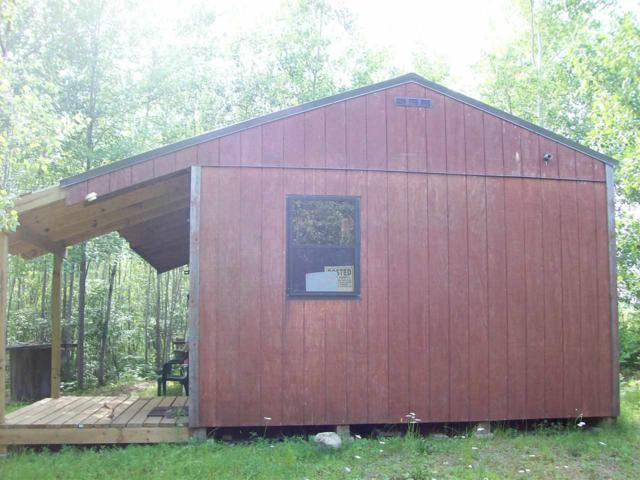 39 ac Burma Road, Maplehurst, WI 54447 (#1863947) :: Nicole Charles & Associates, Inc.