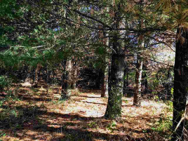 8 Ac Purcell Rd, Verona, WI 53508 (#1864840) :: Nicole Charles & Associates, Inc.