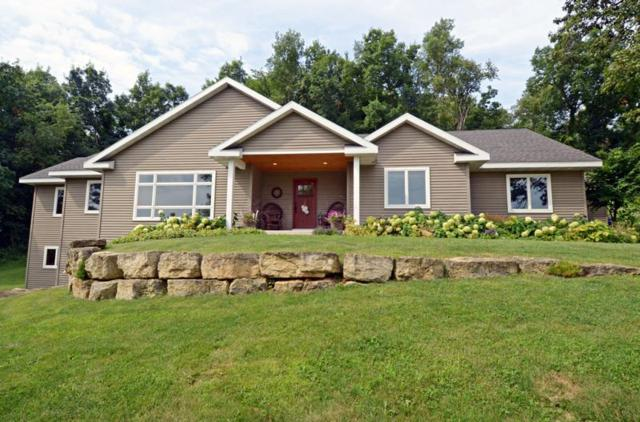 9929 Carter Rd, Black Earth, WI 53560 (#1865178) :: Tucci Team