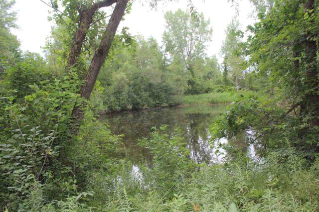 L2 Meadowood Shores Dr, Neshkoro, WI 54960 (#1865204) :: Nicole Charles & Associates, Inc.