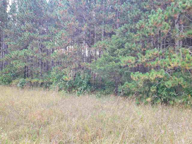2.49 Ac 11th Ave, Springville, WI 53965 (#1868848) :: Nicole Charles & Associates, Inc.