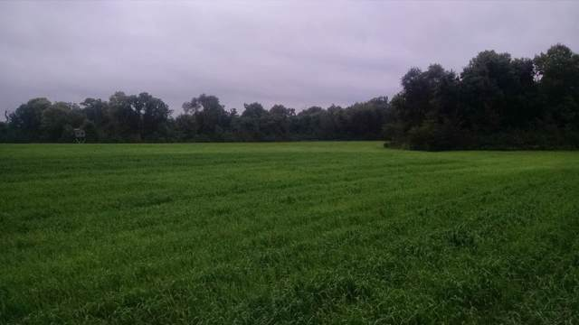 49.92 Acres County Road X, Albany, WI 53502 (#1869004) :: HomeTeam4u