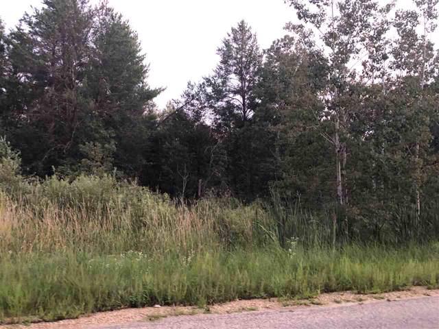 Deerborn Ave, Adams, WI 53934 (#1869485) :: HomeTeam4u