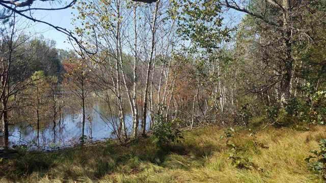 Evergreen Ln, Harris, WI 53949 (#1869586) :: HomeTeam4u