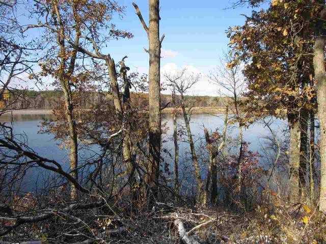 389 Twin Lakes Tr, Rome, WI 54457 (#1872325) :: Nicole Charles & Associates, Inc.