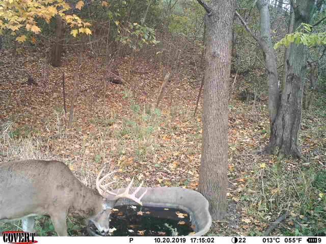 90 AC Young Rd, Hillsboro, WI 53929 (#1873569) :: HomeTeam4u