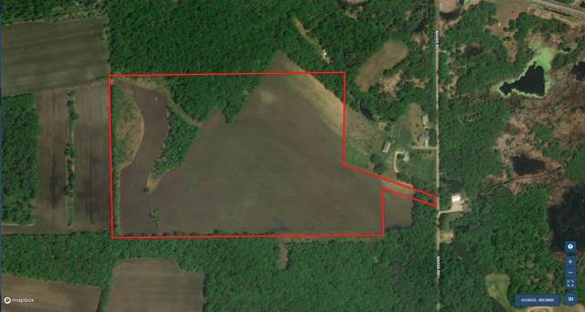 63 AC Maass Rd, Lewiston, WI 53901 (#1874533) :: Nicole Charles & Associates, Inc.