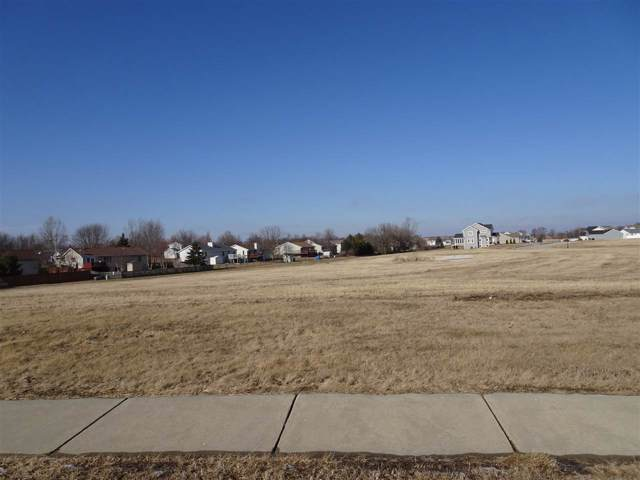 519 Water Tower Dr, Marshall, WI 53559 (#1875166) :: HomeTeam4u