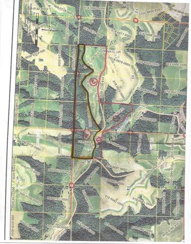 65 A/C Duha Ridge Rd, Seneca, WI 54654 (#1875323) :: HomeTeam4u