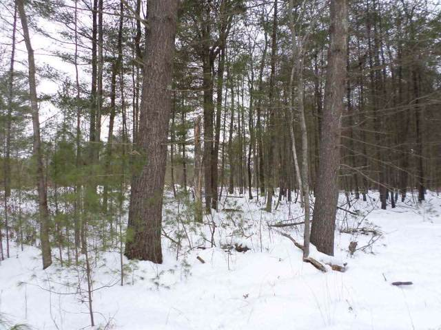 0 County Road Hh, Bear Bluff, WI 54666 (#1875767) :: Nicole Charles & Associates, Inc.