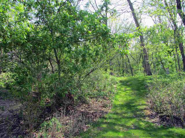 L5 Oak Savannah Ct, Sun Prairie, WI 53559 (#1876056) :: HomeTeam4u