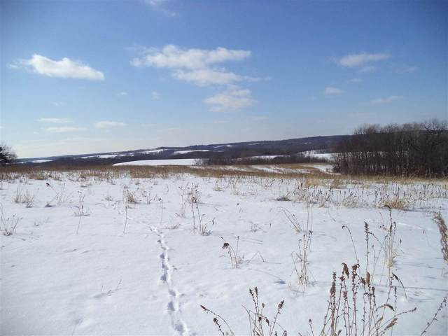 156.44 Ac Peterson Rd, Arena, WI 53503 (#1876962) :: Nicole Charles & Associates, Inc.